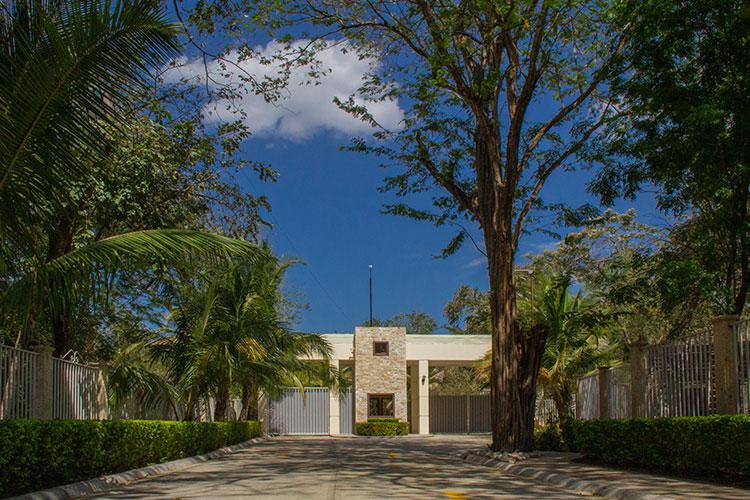 Oasis Tropical - Galería - Villas